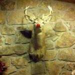 Dead Rudolph